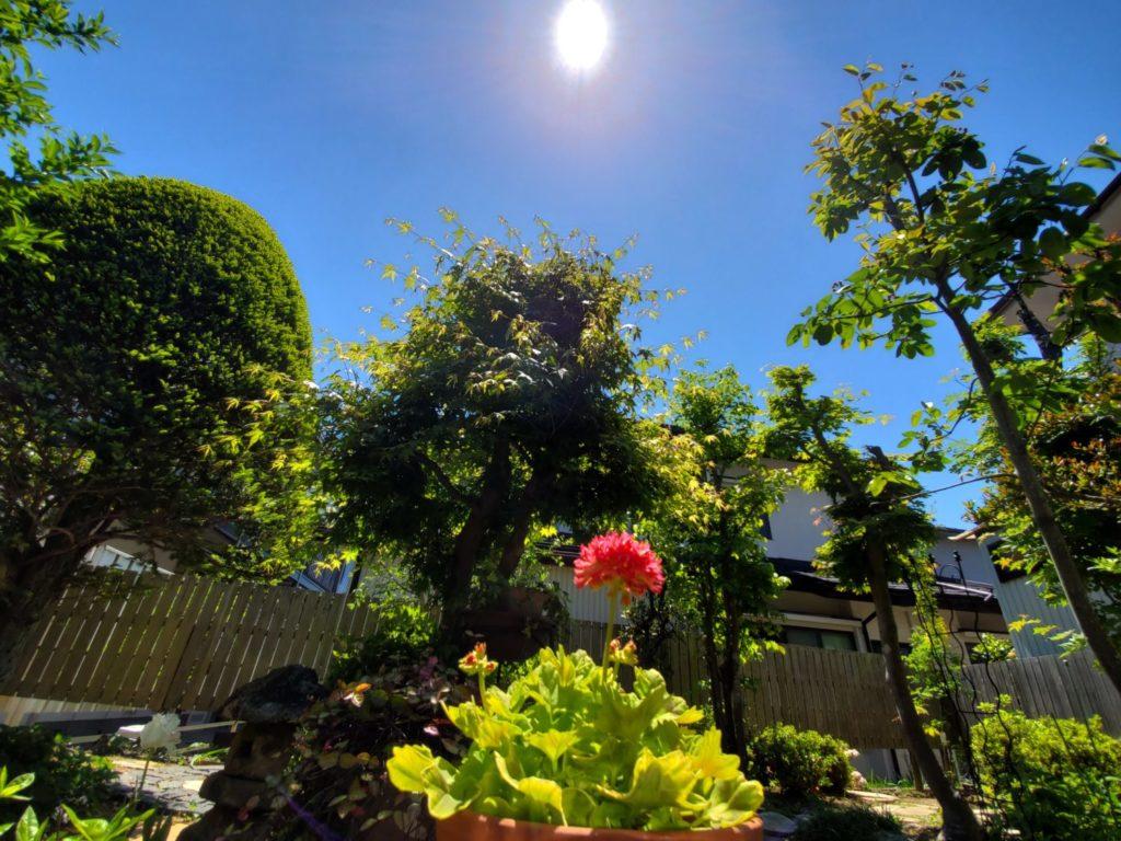 リフォーム 塗装(屋根・外壁) 仙台 費用 花