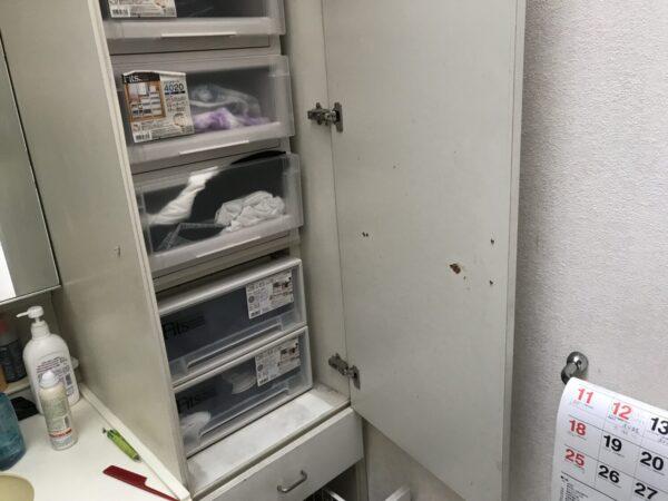 リフォーム 仙台 洗面 費用